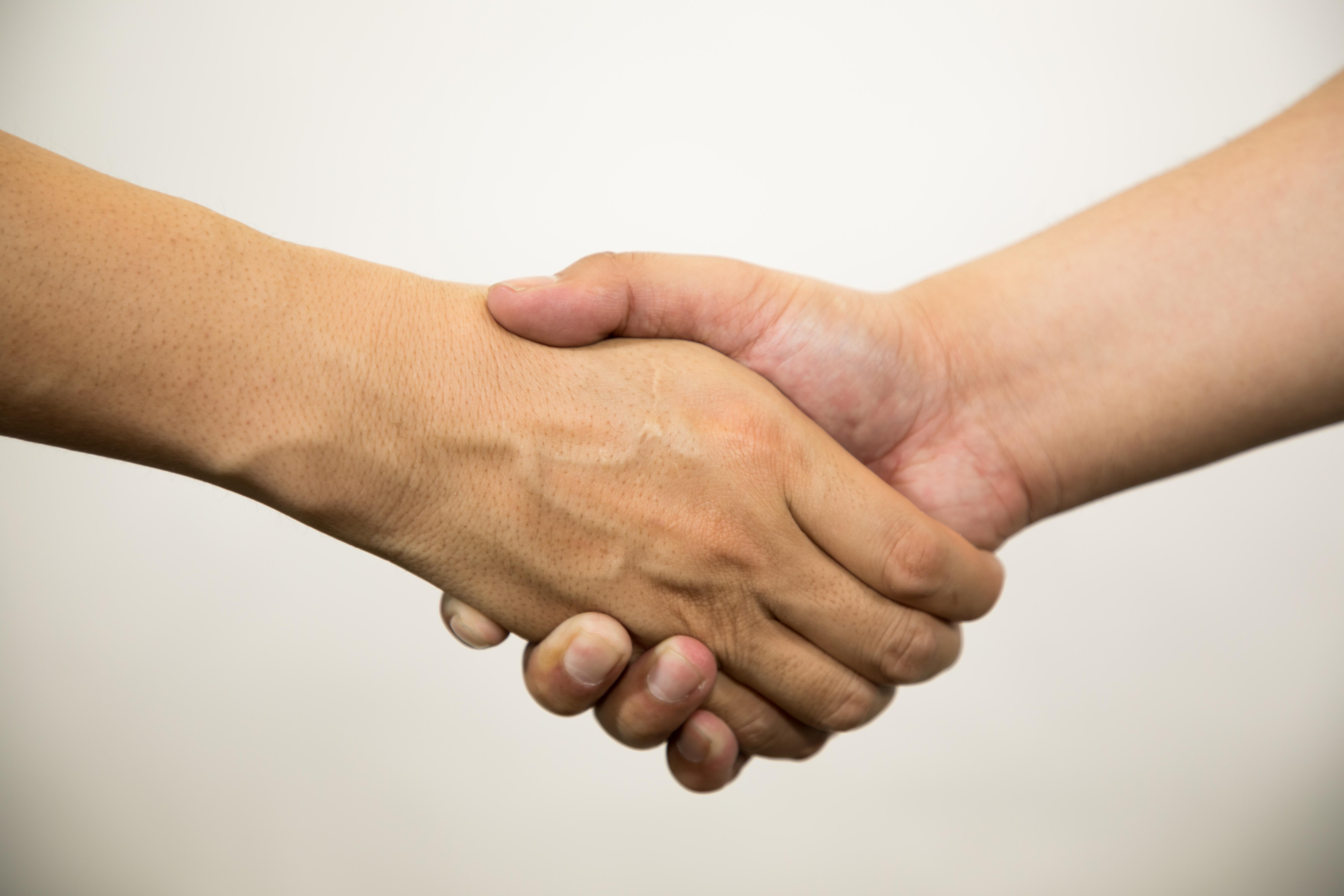 握手をして招待する