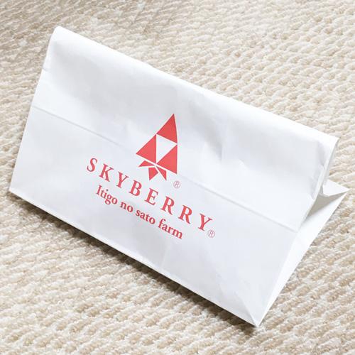 発送用の紙袋